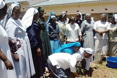 Malawi alumnae plant trees in efforts to conserve the environment