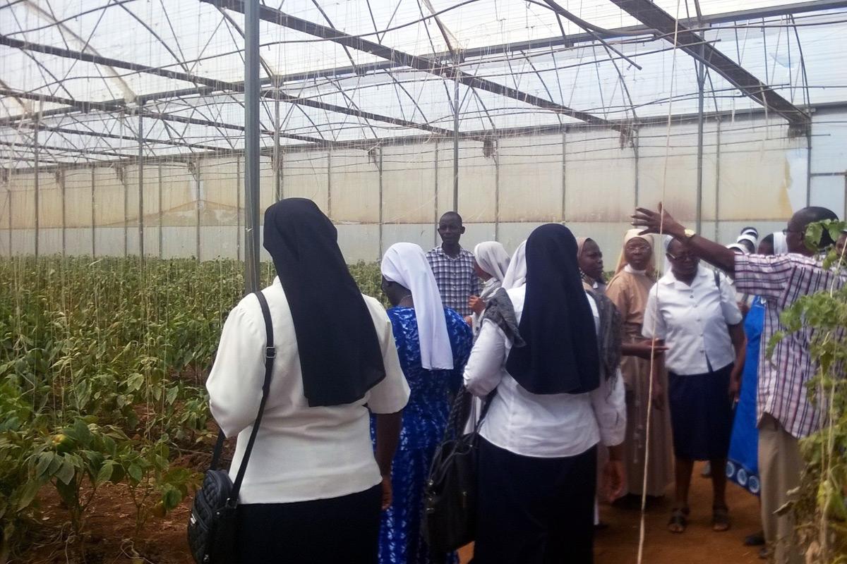 Nigerian sisters took an educational field trip to Tenti Green Farm, Vom, Plateau State.