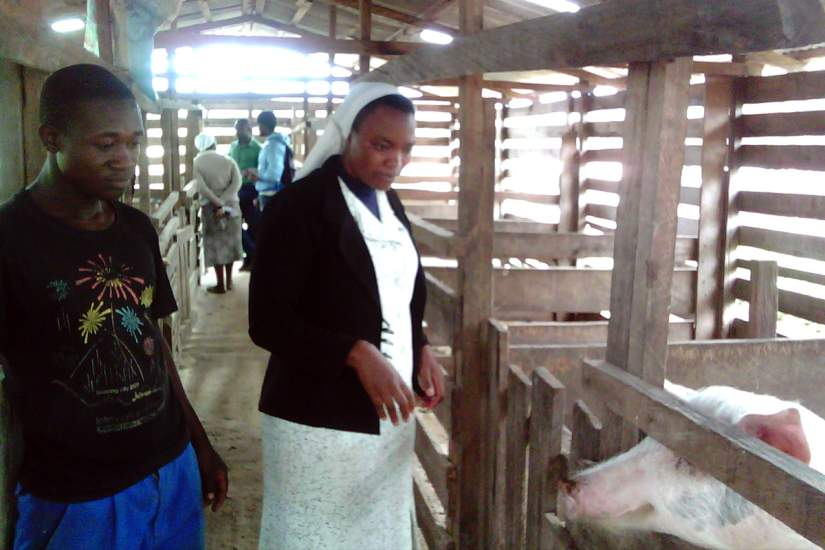 In addition to being an educational facility, St. Mary High School grows crops and raises livestock such as poultry and pigs. The income-generating activities on the farm help to pay teacher salaries, maintain the school and feed the children.