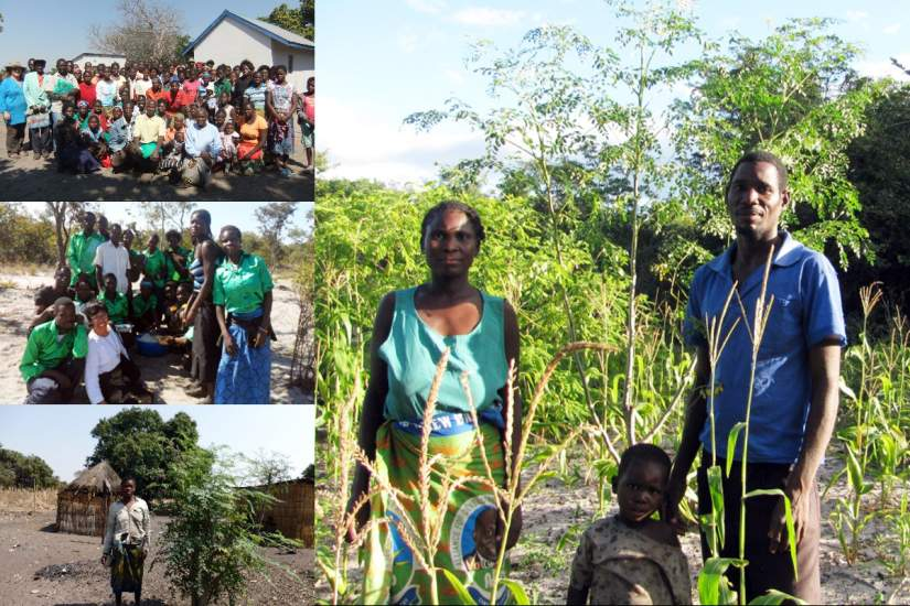 Moringa Farmers at Mother Earth Centre in Mongu, Zambia