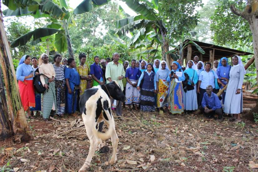 Sr. Faustina and her SLDI Finance track classmates take a field trip to a nearby sustainable farm in Uganda.