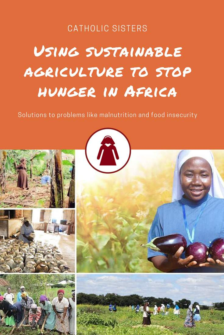 Sisters at the Forefront of Sustainable Agriculture in Africa