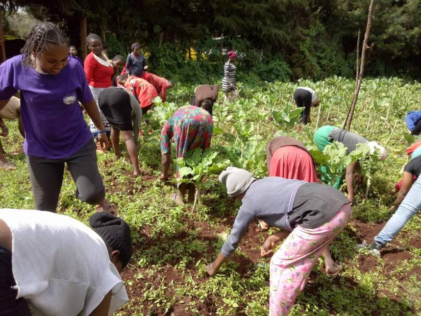 HESA alumna Sr. Anne Kamene, ASN, has applied her education to develop a farm supporting the Cheshire Home for Girls in Kenya, which provides a residential and training program for 35 young women with varying mental and physical disabilities. The home only buys about 5% of the food they eat; the rest of their food comes through donors and resources from their land.