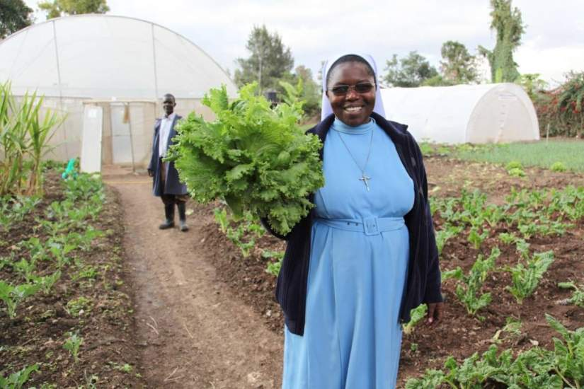 Sr. Catherine shows off lettuce grown at the Thika farm greenhouse farming project in Kenya, run by SLDI alumna Sr. Susan Wanjiru, an Assumption Sister of Nairobi (ASN). Growing better crops leads to increased food production to feed children in their schools.
