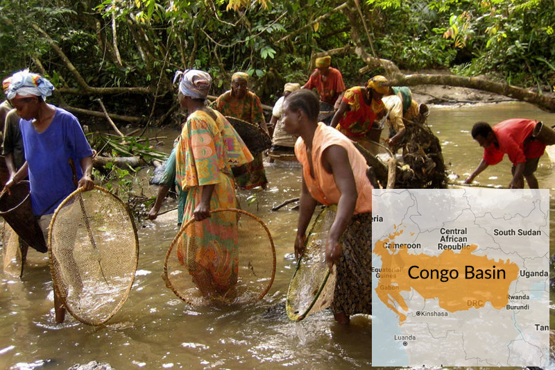 Humans have inhabited the forests of the Congo Basin for tens of thousands of years. Today, the Congo Basin provides food, medicine, water, materials and shelter for over 75 million people.