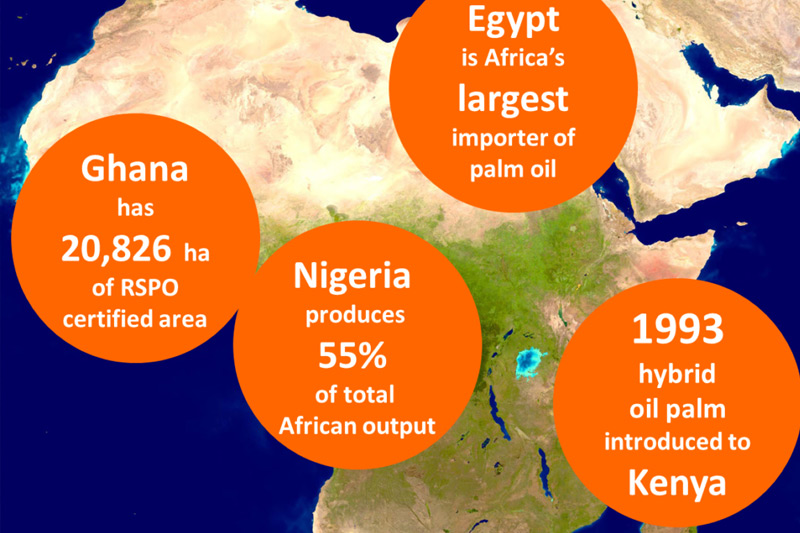 Palm Oil is the primary cooking oil in Africa