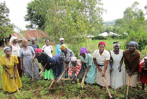 Income Womens Groups in Zambia